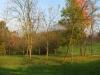 panoramica5bassa-ris-960